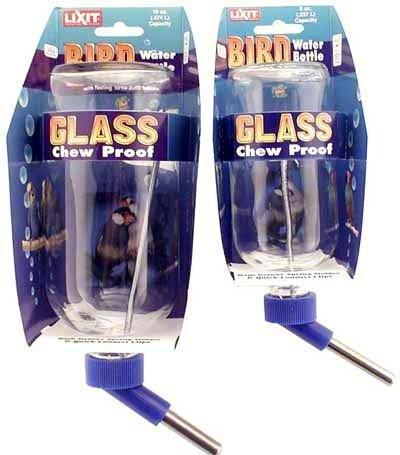 Lixit Glass Bird Bottle (8 oz)