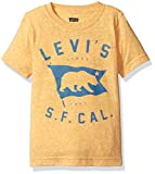 Levi's Little Boys' T-Shirt, Golden Rod Logo, 5