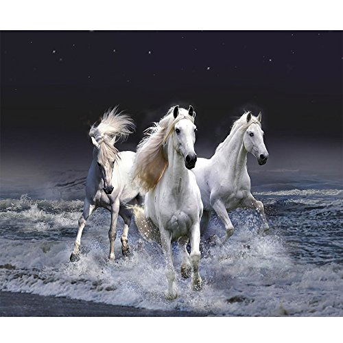 blxecky-5d-diy-diamond-painting-by-number-kitspentium-of-the-horse38x35cm-15x14inch