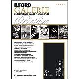 ILFORD 2002450 GALERIE Prestige Gold Mono Silk - 13 x 19 Inches, 25 Sheets