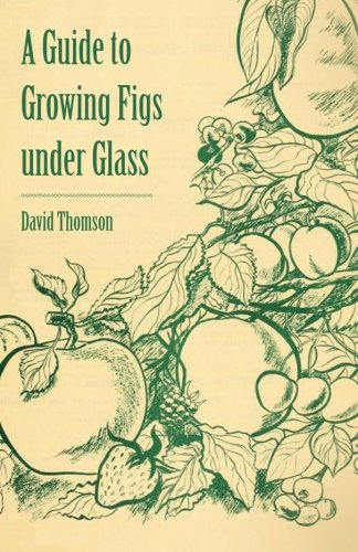A Guide to Growing Figs under ()