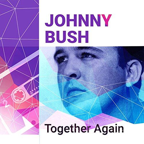 Best Mixtape Ever: Johnny Bush (The Best Of Bush)