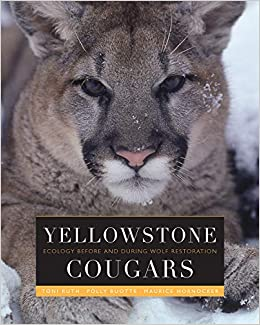 Yellowstone Cougars  Ecology before and during Wolf Restoration Hardcover –  April 1 6016856f08c7