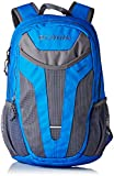 Columbia Beacon Daypack Backpack (Blue/grey, O/S)