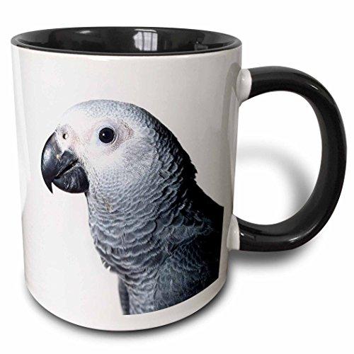 Parrot Mug Large - 3dRose 3dRose African Grey Parrot - Two Tone Black Mug, 11oz (mug_4033_4), Black/White