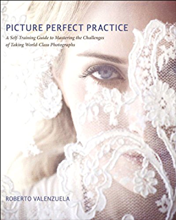 Download picture perfect posing ebook