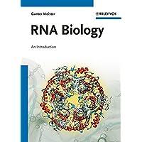 RNA Biology: An Introduction