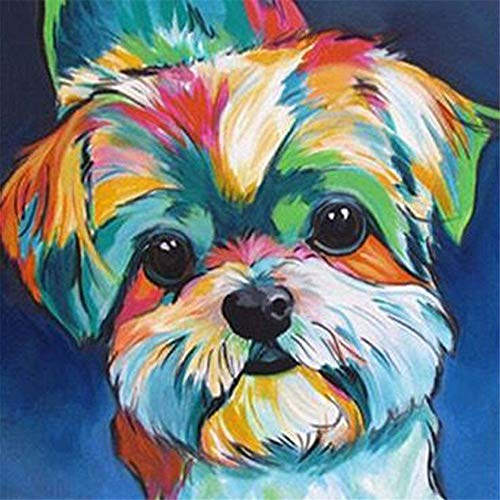 Paint by Number Kits - Colorful Dog 16x20 Inch Linen Canvas Paintworks - Digital Oil Painting Canvas Kits for Adults Children Kids Decorations Gifts (with Frame)]()