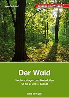 Lernwerkstatt Wald Und Feld Amazon De Anette Ricken Eva Maria
