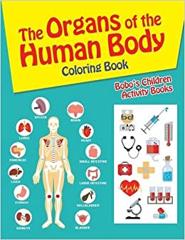 the organs of the human body coloring book bobos children activity books 9781683277057 amazoncom books - Human Body Coloring Book