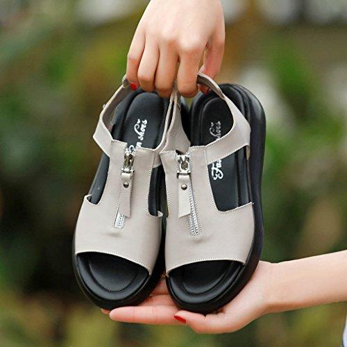 PENGFEI Chanclas de playa para mujer Zapatillas de verano Sandalias de compras Mujer Mujeres embarazadas Ocio Sandalias planas antideslizantes Negro, gris, rojo y blanco Cómodo y transpirable ( Color  Gris