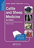 Cattle and Sheep Medicine: Self-Assessment Color Review (Veterinary Self-Assessment Color Review Series)