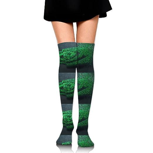 9b1b0ab61162f Women's Long Socks Nvidia Green Long Over Knee High Nursing Sock at ...
