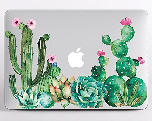 pretty nice 1fec1 5575a Amazon.com: Modo Design Cactus Macbook Succulent Decal Vinyl Macbook ...