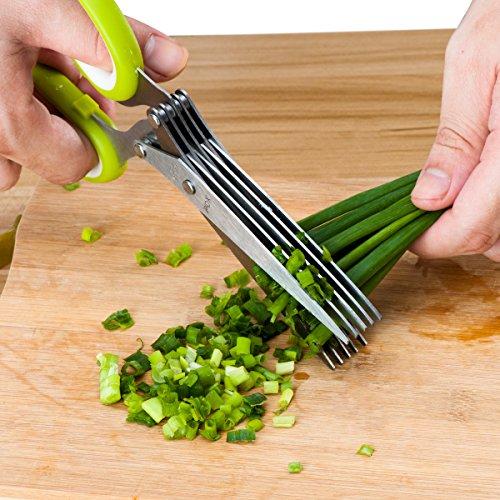 Herb Scissors, X-Chef Kitchen Scissors 5 Blades...