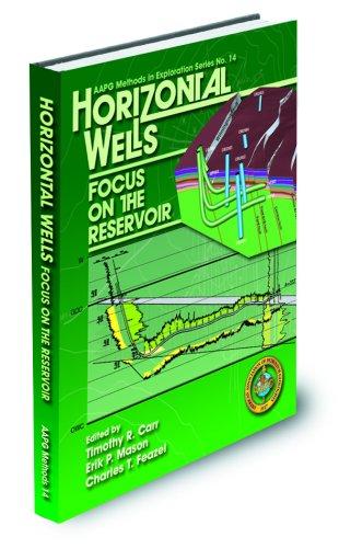 Horizontal Wells: Focus on the Reservoir