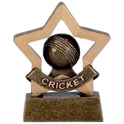 8,26 cm Mini estrella Cricket trofeo grabado gratis hasta 30 letras con A969