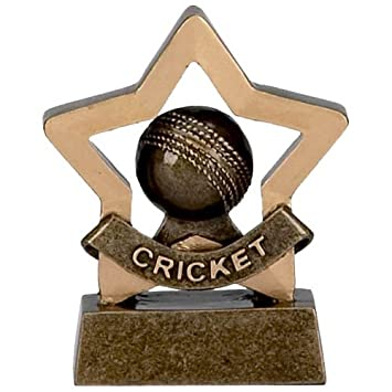 8,26 cm Mini estrella Cricket trofeo grabado gratis hasta 30 ...