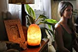 Wetsone-Himalayan-Salt-Lamp-Rock-With-Bulb-Electric-Wire-Wood-Base-Fine-Pink-Rock-Salt-Lamp-For-Desk-Table-Natural-Ionic-Action-8-to-9-Inch-high-6-7lbs-Large