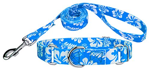 Country Brook Design Blue Hawaiian Martingale Dog Collar & Leash - Extra - Aloha Lead Pet