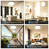 Oeegoo Modern LED Ceiling Light Fixtures Dimmable