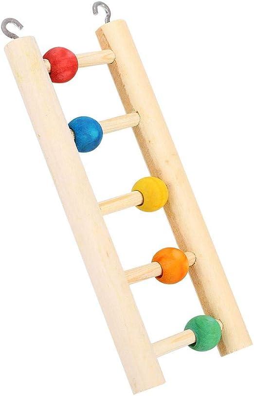 Focket Escalera de pie para Loros, Escaleras de Madera Natural de Juguete con Cuentas de Colores, Escalera para Loros Jaula para pájaros Suministros para pájaros para Jugar, trepar y Descansar: Amazon.es: Productos
