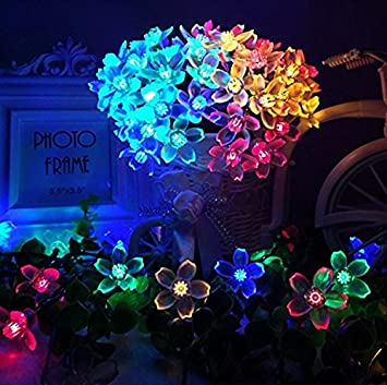 Jard/ín 50 LED 7m Luces luz Solar Cadena de tr/ébol L/ámparas de Flores para Decoraci/ón Navidad Cumplea/ños Tarde Boda casa Fiesta