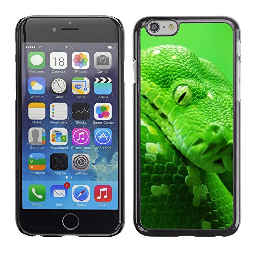 Premio Sottile Slim Cassa Custodia Case Cover Shell // V00003007 boa arbre serpent // Apple iPhone 6 6S 6G PLUS 5.5""