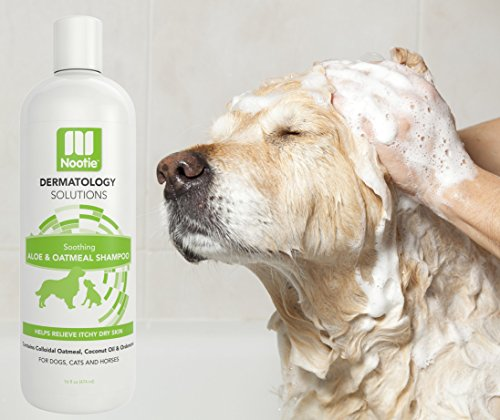 Oatmeal-Dog-Shampoo-with-Soothing-Aloe-by-Nootie-Best-for-All-Pets-including-Dogs-Cats-and-Horses-100-All-Natural-Deodorizing-Soap-Free-Formula-Provides-Itchy-Skin-Relief-16-Oz