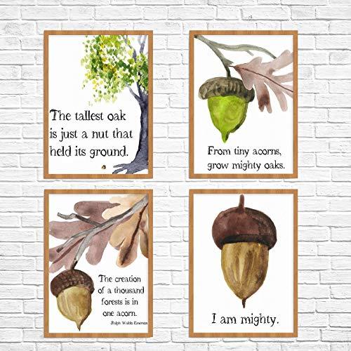 (Set of 4 Acorn/Oak Tree Watercolor Prints, Unframed)