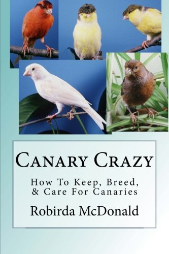 Birds Canary Pet (Canary Crazy: How To Keep, Breed, & Care For Canaries)