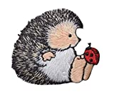 Hedgehog with Ladybug Iron on Embroidered Patch
