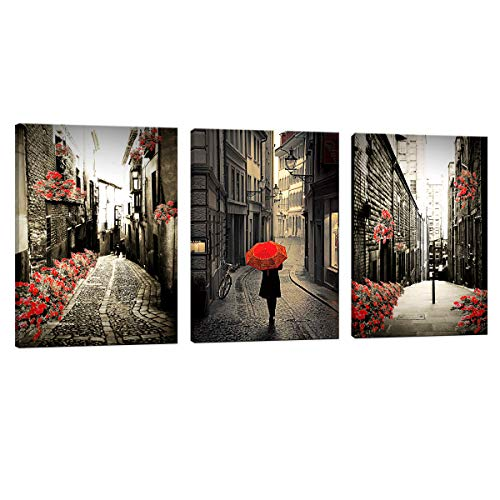 JLXart 3 Panels Canvas Wall Art European Black and White Architecture Street View Red Flower Room Frame Decorative Painting Artwork