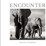 Encounter by David Yarrow (2013) Hardcover