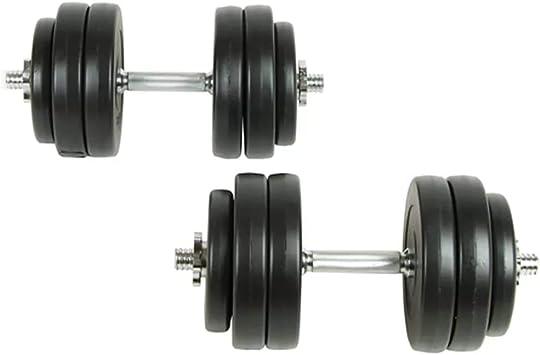 vidaXL Juego de Pesas 30kg Mancuernas Fitness Musculación Entrenamiento Discos: Amazon.es: Bricolaje y herramientas