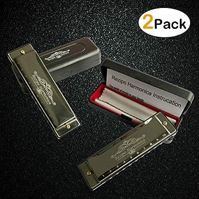 2-pcs-diatonic-harmonica-standard