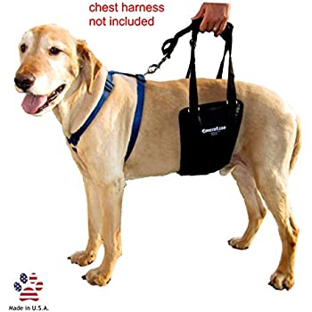 GingerLead Dog Support & Rehabilitation Harness with Stay on Straps - Medium (Male/Female) & Large Male Sling - Ideal for aging, disabled, or injured dogs. Helps with balance and mobility.