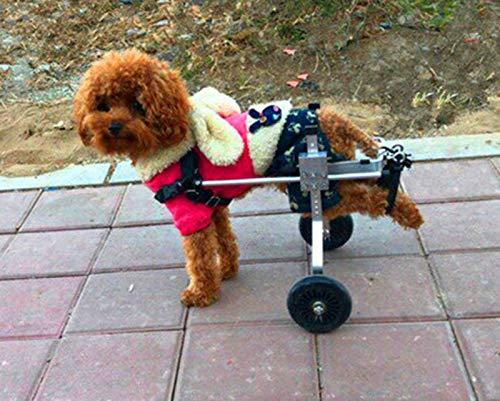 Carro para perros, adecuado para mascotas Patas traseras Practique rehabilitación Miembro discapacitado Discapacitado, perros pequeños grandes, ajustables, ...