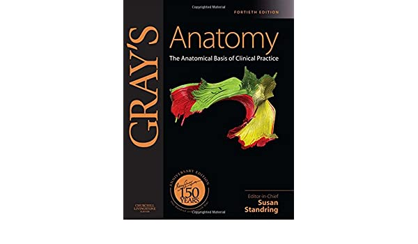 Grays Anatomy: The Anatomical Basis of Clinical Practice, Expert Consult - Online and Print, 40e: Amazon.es: Susan Standring PhD DSc: Libros en idiomas ...