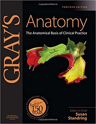 Grays Anatomy 39th Edition Pdf