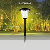 Best Solar Light Outdoor Solar LED Filament-Style Path Weatherproof Metal Light | 10X Brightness | 3000K | 4-Pack