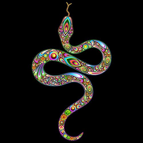 Pitaara Box PB Snake Psychedelic Art Design Unframed Canvas Painting 30 x 30inch by Pitaara Box