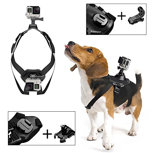 Pettorina dorso+petto cane supporto riprese video per Gopro HD Hero 4 3 3 2 1