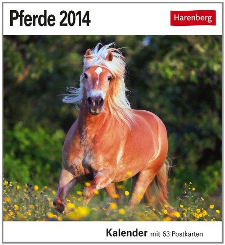 Pferde 2014: Sehnsuchts-Kalender. 53 heraustrennbare Farbpostkarten