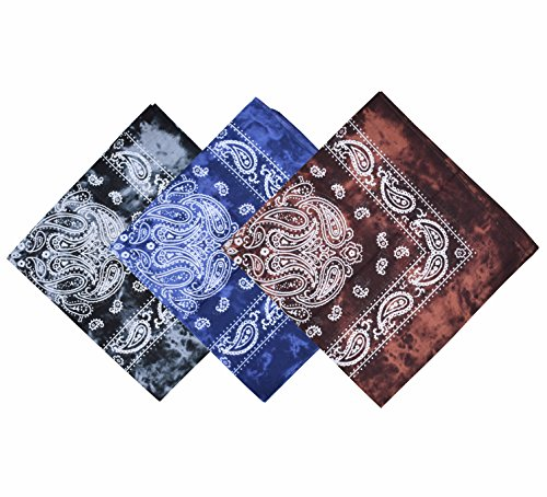 (Raylarnia Paisley 3 piece Assorted Cowboy Bandanas Cotton 22 x 22 inch (one size, New style A))