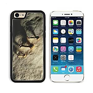 Mushrooms Plant Vegetables Wall Mogo Outlet iPhone 6 Cover Premium Aluminium Design TPU Case Open Ports Customized Made to Order