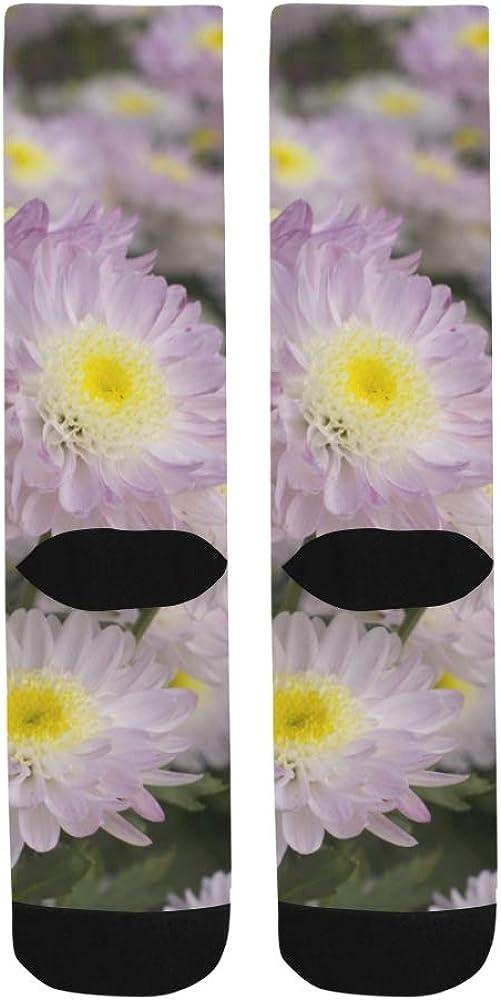 Beautiful Chrysanthemums Flowers Crazy Soccer Dress Trouser Sock Women Botts