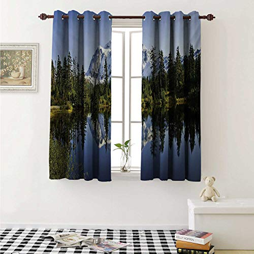 Antique White Lime Crystal - shenglv Landscape Waterproof Window Curtain Fall Colored Trees and Snowy Mountain Landscape with Crystal Lake Nature Curtains Living Room W55 x L45 Inch Green Blue White