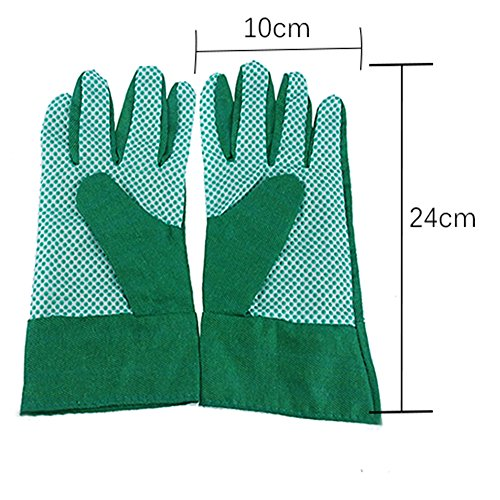 Green Burgeon Garden Tools Sets 8-Piece Including Gloves, Bag, PVC Line, Spray, Waist Bag and 3 Small Pieces Tools