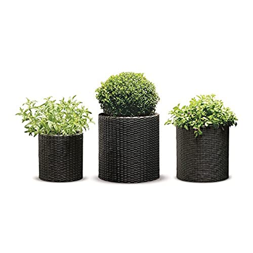 Keter Round Cylinder Plastic Rattan Resin Garden Flower Plant Planters  Decor Pots 3 Pc Set, Assorted Sizes, Brown